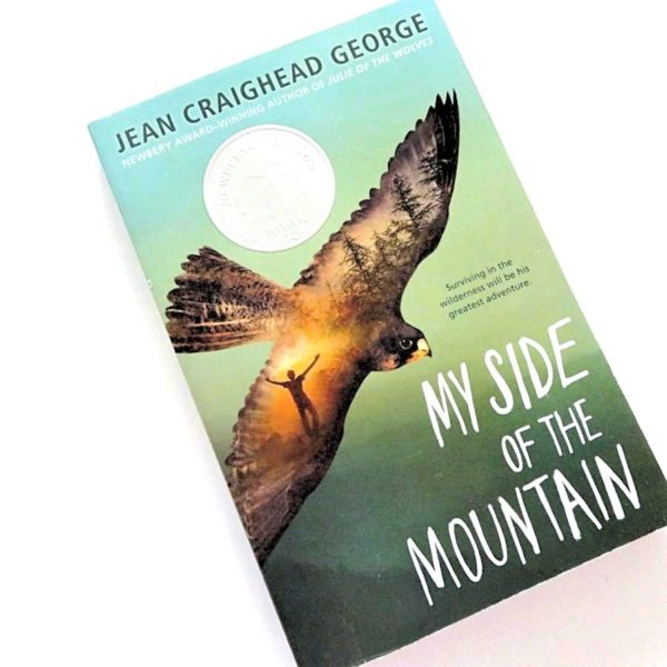 Book My side of the Mountain